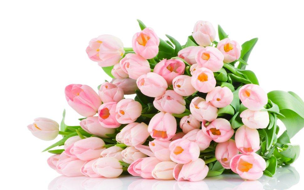 statia dostavka cvetov